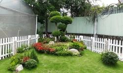 Phong thủy kiến tạo cảnh quan sân vườn